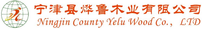 Scaffolding Board Logo